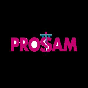 PROSSAM Business Partners